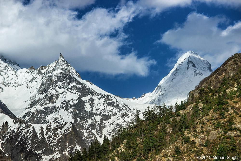 Gangotri hills